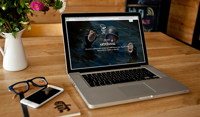 Diseño de sitio web Wordpress